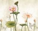 Mẫu rèm cuốn tranh - Màn cuốn in tranh chống nắng Vạn Thái